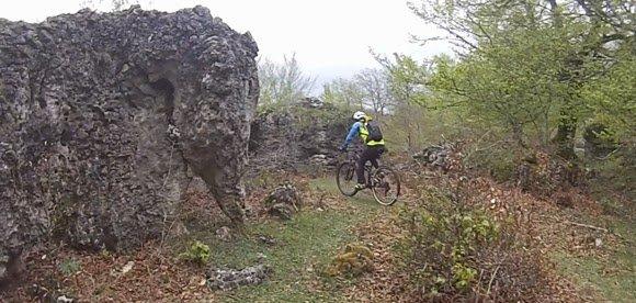 rocas de animales en Opakua
