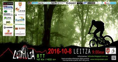 Leitzulia